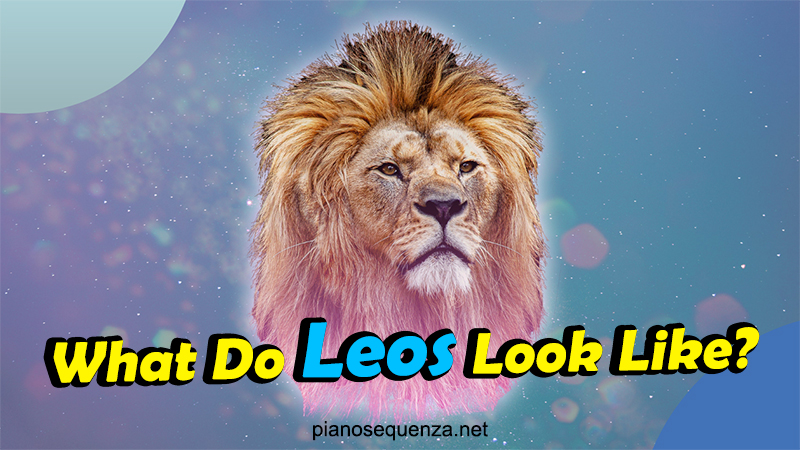 a glimpse at leo individuals